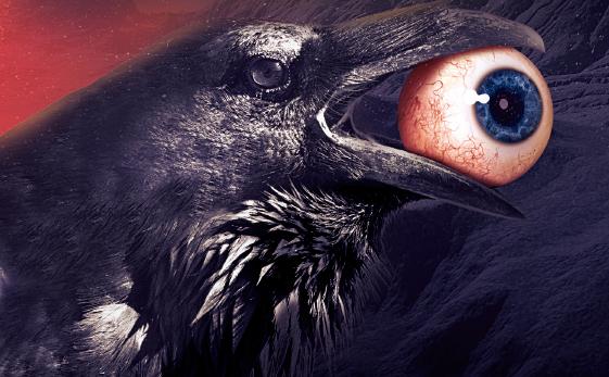 BetweenWorlds_Ragnaro raven